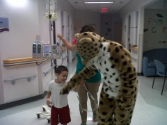 Cherry Belle Cheetah influencing Andrew to take a walk.